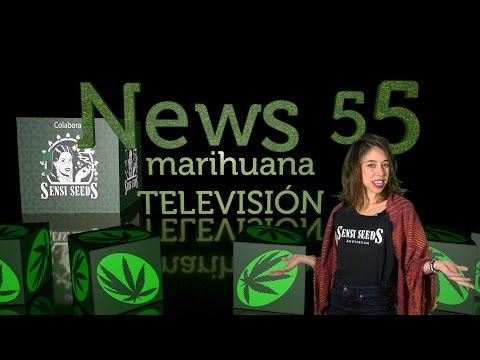 Marihuana para comenzar el año y EXPOMEDEWEED COLOMBIA en NEWS 55