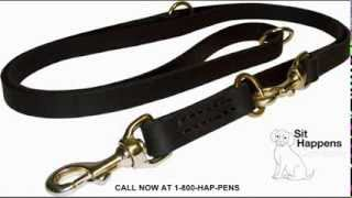 Sit Happens - Dog Obedience School Commercial