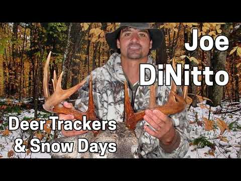 208 JOE DINITTO - Adirondack Deer Trackers and Snow Days