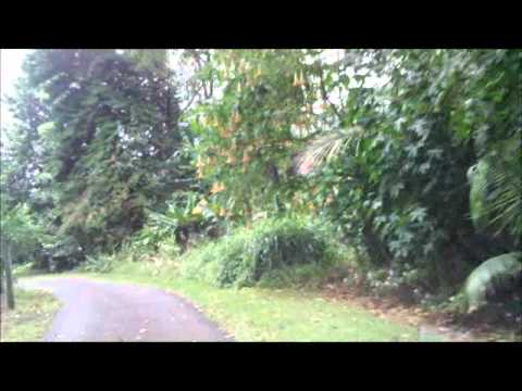 Wood Valley Road Tour Second Part Near Pahala on the Big Island of Hawaii