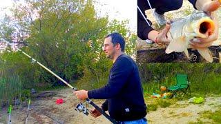 Открытие сезона Рыбалка Ловля сазана на реке Дон