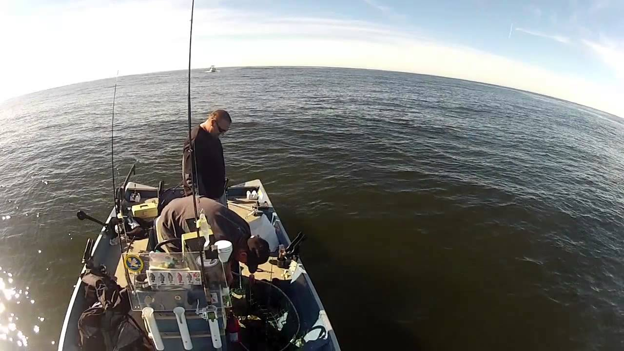Bodega bay ling cod fishing double hookup norcal for Bodega bay fishing reports