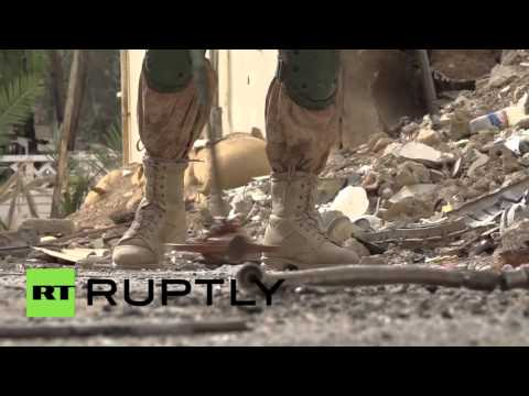 Syria: Sniffer dogs and sappers clear Palmyra of mines
