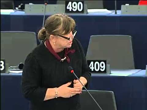 Norica Nicolai [EN] on EU-Iraq partnership