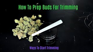 Trimming 101: How T๐ Prep Marijuana Buds For Final Trimming