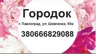 Натяжные потолки Павлоград Купить двери окна  цены недорого(, 2015-07-15T12:48:21.000Z)
