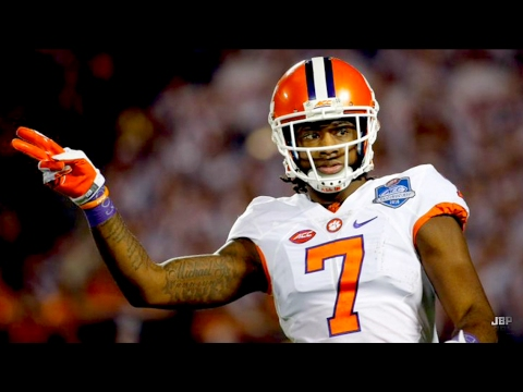Best WR in College Football || Clemson WR Mike Williams 2016 Highlights ᴴᴰ