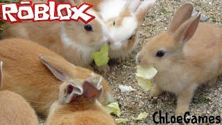Chloe Plays ROBLOX: Bunny Island (#3) | RIDEABLE RIDES