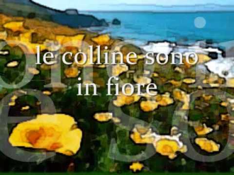 Canzoni d'Amore - le colline sono in fiore -.