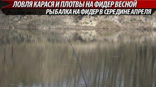 Ловля карася на фидер в середине апреля. Рыбалка на фидер 2020