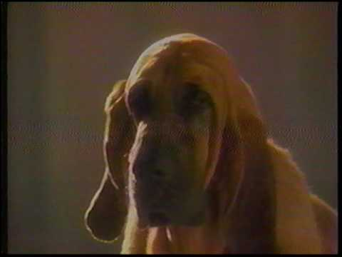 purina-dog-food---1995-commercial