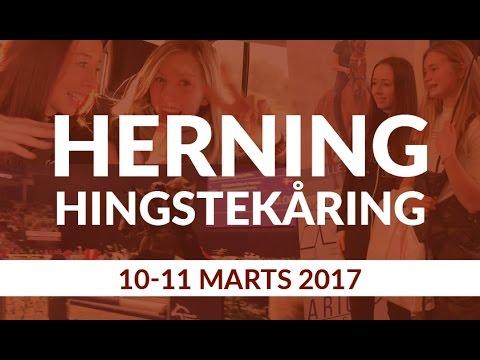 Herning Hingstekåring 2017 - Mille Jørgensen
