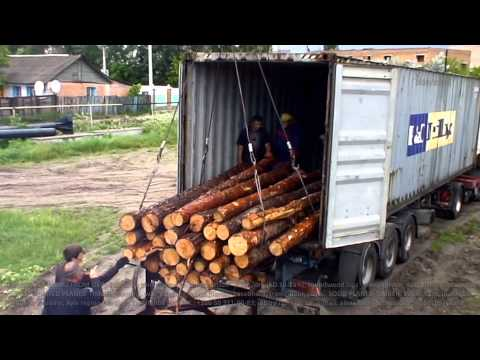 Exports of pine roundwood logs from Ukraine. Supply (imports) to the Middle East and Asia