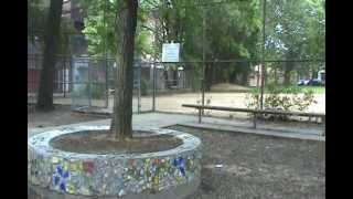 Starr Garden LOVE YOUR PARK 2012.wmv