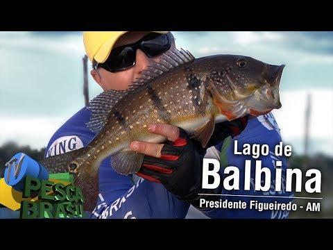 TV PESCA BRASIL - Lago de Balbina - Paraíso da Pesca - AM