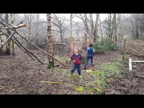 Noah And Eli Building A Bushcraft Camp