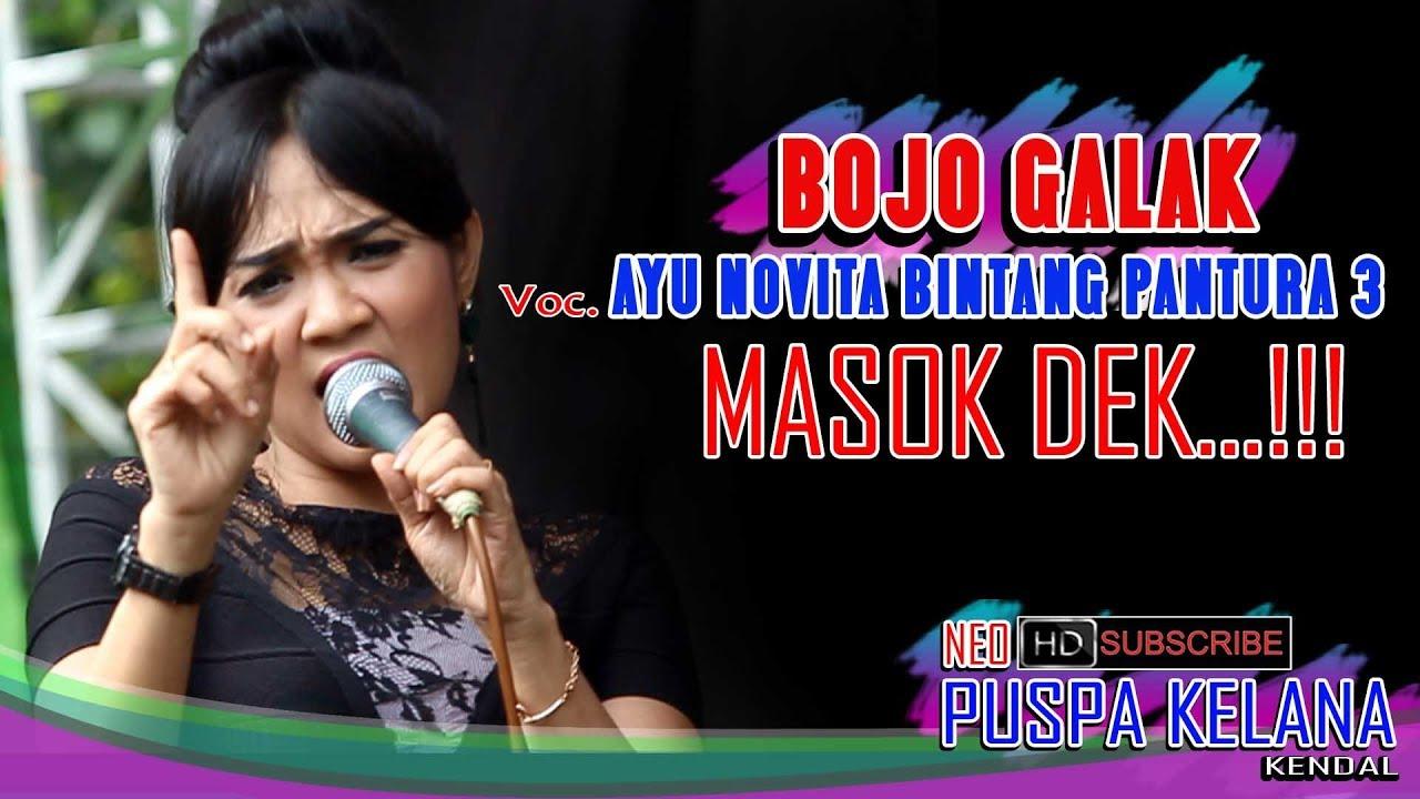 Bojo Galak: Bojo Galak Ayu Novita Bintang Pantura 3 Official Neo PK