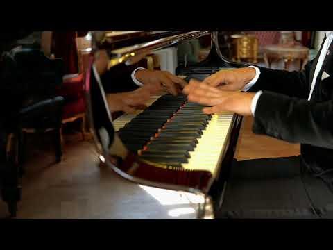 #6 Chopin - Etude opus 25 no. 6 in G sharp minor performed by Wibi Soerjadi