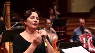 """paul taylor orCHestra mit """"Alphorn & Nordic Winds"""" Schweizer Tournee 2013"""