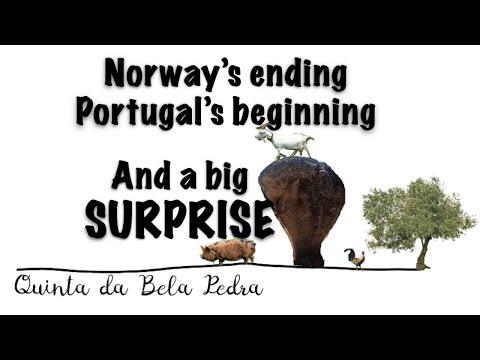Bela Pedra, my Portuguese Farm: Part 27 (Endings, Beginnings and a BIG SURPRISE)