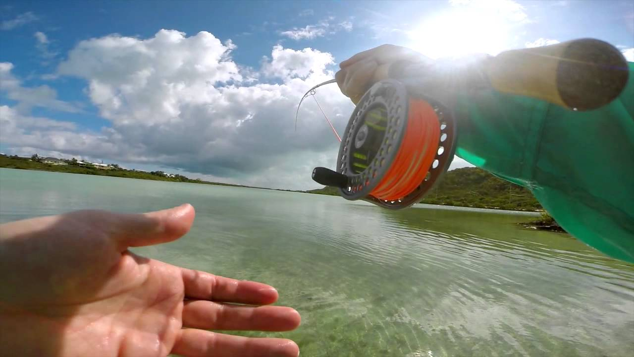 Turks and caicos barracuda fly fishing gopro youtube for Best gopro for fishing