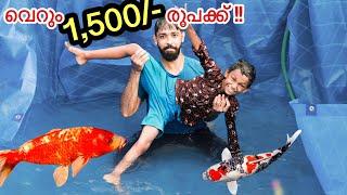 1,500/- രൂപക്ക് ഒരു സ്വിമ്മിങ് പൂള് ഉണ്ടാക്കി കുളിച്ചു | Building A Koi Pond For Kid | Surprising
