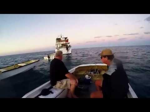 Rob & Arthur Swains Reef Carlo Charters Hand Line Fishing