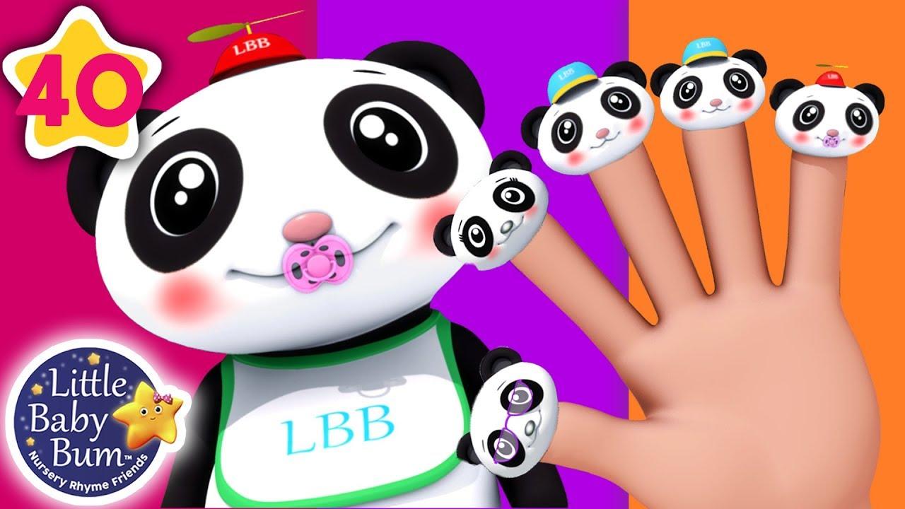 Finger Family Panda | Finger Family Song +More Nursery Rhymes & Kids Songs | Little Baby Bum