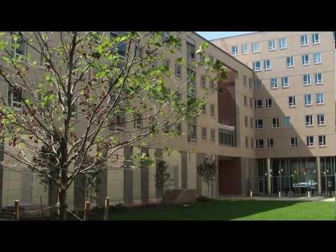 Rutgers housing assignments