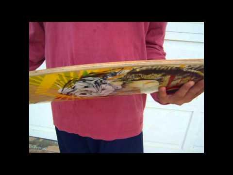 Arbor Fish Longboard Review