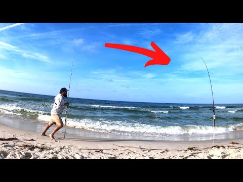 Surf Fishing For BIG Summer Pompano - Gulf Shores, AL