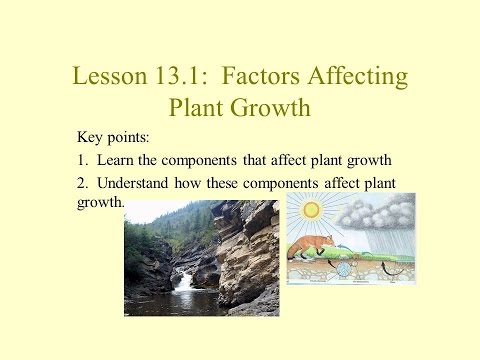 Unit 2 Lesson 13.1 Factors Affecting Plant Growth