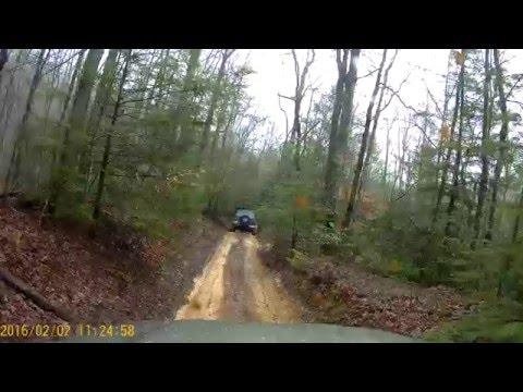 Jeeps at Royal Blue