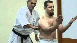 Sanchin kitae Shohei ryu / Uechi ryu kei Russia