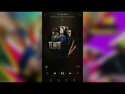 Descargar Gratis te Bote Remix con letra, carátula, info, etc...