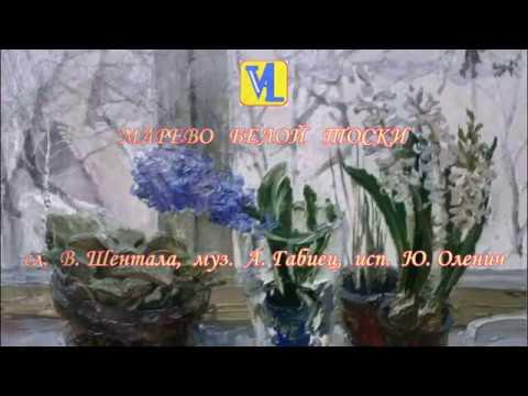 Смотреть видео Марево белой тоски, сл  В  Шентала, муз  А  Габиец, исп  Ю  Оленич