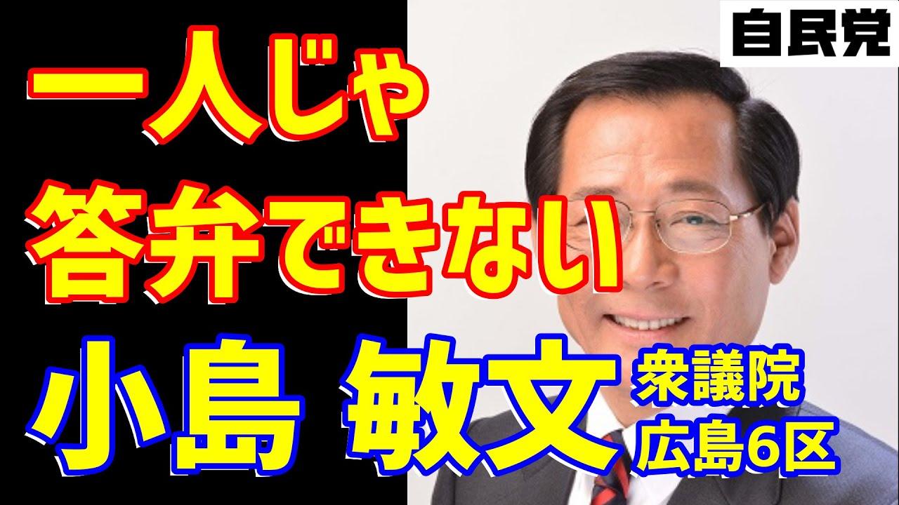 小島敏文政務官の頼りないマスク対策答弁を学ぼう!【広島県】【自民党】【2020年衆議院】