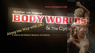 (❗Real Human Bodies❗) Body Worlds Exhibit at the Museum of Science in Boston 2019