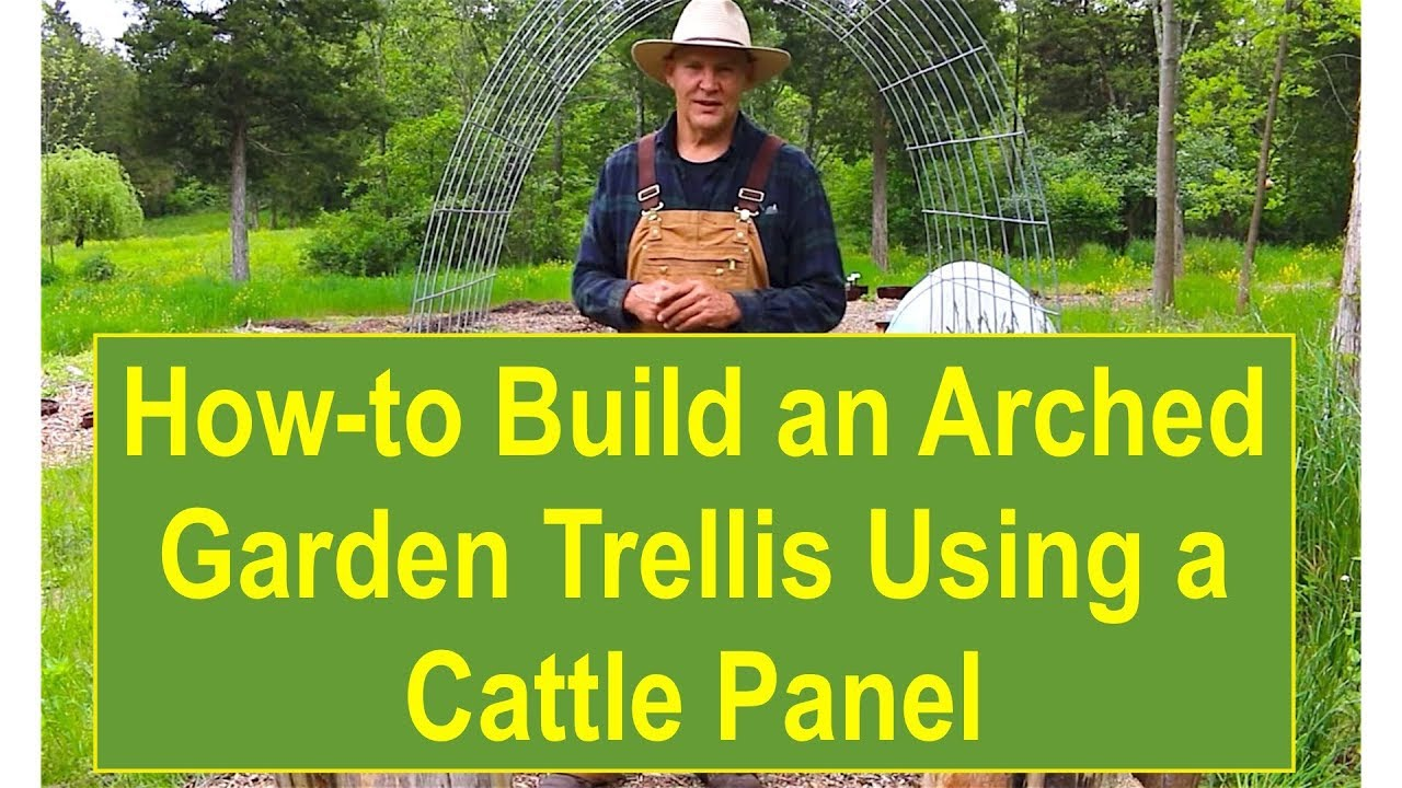 Tips and Ideas on How to Build an Arched Garden Trellis Using a