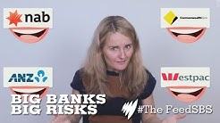 Australia's big banks taking big risks I The Feed