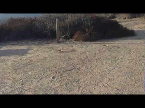 Crystal Cove State Park Lower Moro Campground Tour