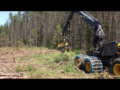 New Jobs With JDI Sponsored Forest Operator Training