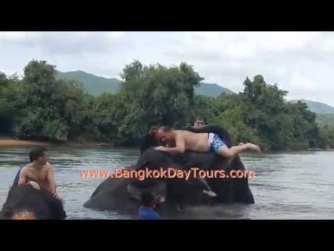 elephant-tours-thailand-with-bangkok-day-tours