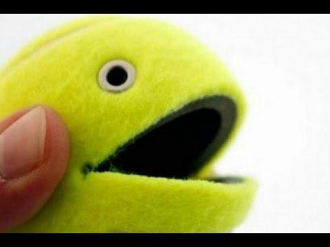 DIY 5 interesting lifehacks with tennis balls.