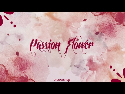 Mamamoo (마마무) - Passion Flower (정열의 꽃) — [Color Coded in Han/Rom/Eng Lyrics]