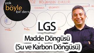 Lgs - Fen Bilgisi - Madde Döngüsü  Su Ve Karbon Döngüsü