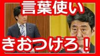 小西ひろゆきさんが答弁中に安倍総理に指をさし、そして危険な発言を行...