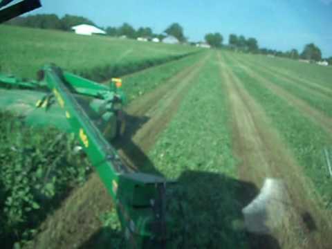 John Deere 7810 & 946 MoCo mowing hay