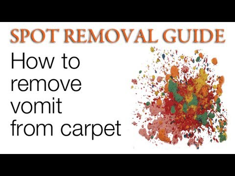 how to clean vomit from carpet spot removal guide youtube. Black Bedroom Furniture Sets. Home Design Ideas