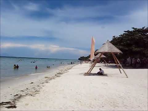 Anda Beach Bohol White Sand Friendly Place
